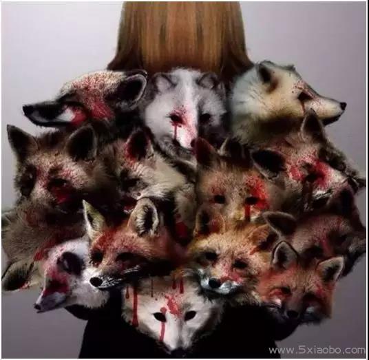 揭开人类最丑陋的一面:生而为人,我很抱歉  保护动物 第14张
