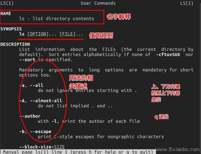 认识Linux命令--常用基本命令  Linux 命令 第5张